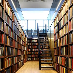 Библиотеки Адамовки