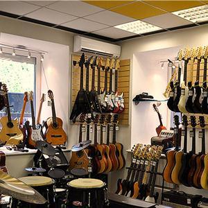 Музыкальные магазины Адамовки